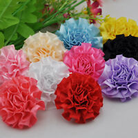 10pc Ribbon Flowers Bow Carnation Appliques Craft Sewing Wedding Decoration E150