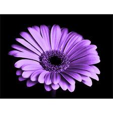 Close-up Purple Flower Canvas Wall Art Print