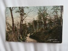 Colwyn Bay Denbighshire Llanrwst Road 1910 colour postcard