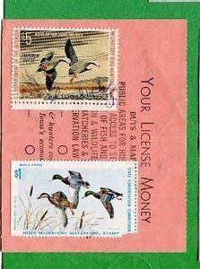 IOWA 1972 Resident Hunting License W/ RW36 Duck + Iowa #1 1972 state stamp - 577
