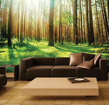 Wall removable sticker sunny forest rays of light trees vinyl mural