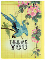 Studio Oh Thank You Notecard Set Jubilee Box of 12 Greeting Cards
