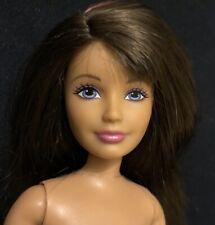 Barbie Doll Skipper Pink Streak Straight Arms Bendable Legs