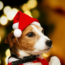 1PC Pet Dog Christmas Hat Small Dogs Puppy Cat Santa Hat Cozy Plush Padded Hat