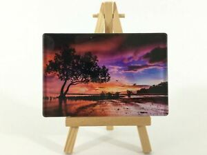 Acrylic Australian Nature Prints Photographs each with own Wooden Easel Small AU