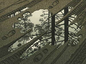 M.C. Escher Puddle Giclee Art Paper Print Paintings Poster Reproduction