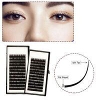 0.15C 0.15D Women Lashview Matte Ellipse Flat Eyelash Extensions Soft Eye Lashes