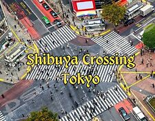 Japan - TOKYO - SHIBUYA CROSSING - travel souvenir FLEXIBLE fridge magnet