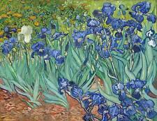 Van Gogh Iris Print on Sheet mdf panel Panel Paint Brushstrokes in Relief
