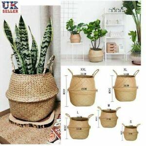 UK Seagrass Belly Basket Flower Plant Woven Storage Wicker Basket Pot Home Decor