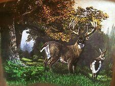 T-SHIRT  XL 100% Cotton BROWN - TEAM REALTREE'S WILDLIFE SERIES BY EDDIE LEROY e
