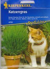 (EUR 5,30  / 100gr. ) Katzengras  Kleintierfutter ,30 gr. Samen für 10 Portionen