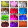 Wholesale 20-2000PCS 4-6 inches Beautiful Rooster Tail Feathers diy