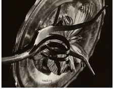 Signed Original 1970s Photo VILEM KRIZ Czech 1921-1994 Untitled Gelatin Silver