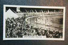 White City Greyhound Racing   Original Vintage Action Photocard Card  VGC