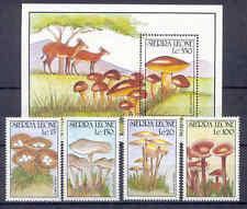 Funghi, Mushrooms-Sierra Leone - 4 valori, 1 BL. ** MNH 1990 parte Set