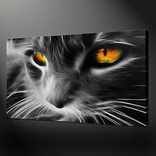 GREY CAT CANVAS WALL ART PICTURES PRINTS 20 x 16 Inch FREE UK P&P