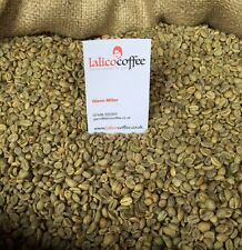 VOLCANIC JAVA KOPI G1 Green/Raw Arabica Coffee For Home Roasting From Indonesia