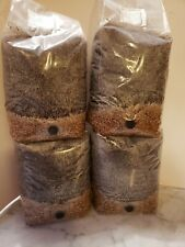 4 5LB All in One  MUSHROOM GROWING BIO-BAG  Substrate + Spawn Sterilzed+ FRESH