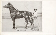 Dan Patch Horse Champion Harness Racing Unused Pearson-Ullberg Postcard G60