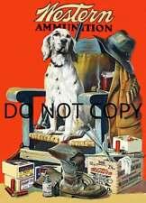 Antique Hunting 8X10 Repro 1920 Western Ammunition Advertisement English Setter