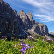 3 Tage Kurzurlaub für 2 Personen nach Südtirol inkl. TOP 3* Hotel & Frühstück