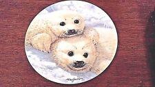 Baby Seals Mike Jackson 1st in The Beauty of Polar Wildlife Bradford Exch Mib