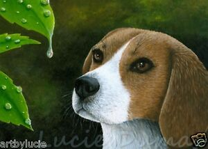 ACEO art print Dog 116 Beagle water drop from original painting by L.Dumas