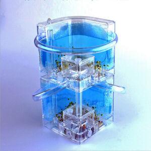Doppelschichten Transparent Ameisenfarm Ameisen Terrarium mit Zubehör