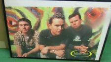New listing Blink 182 Poster New Late 1998 Rare Vintage Collectible Oop
