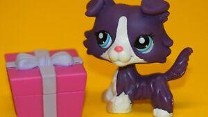 Authentic Littlest Pet Shop  Hasbro Original  LPS 1676