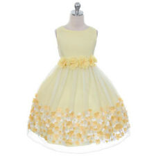 Flower Girl Dress Bridesmaid Wedding Birthday Pageant Toddler Taffeta Mesh Prom