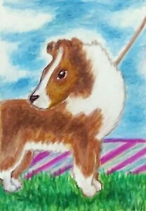 "Shetland Sheepdog 8x10 Art Print Signed by Artist KSams Sheltie ""Summer Fun"""