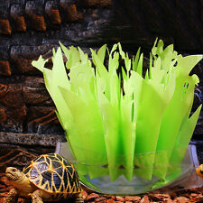 Nuevo reptil, serpiente, Tortuga, Vivero Plantas Ornamento Ambiental Humidificador de aire