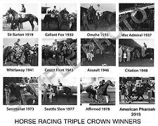 AMERICAN PHAROAH SECRETARIAT AFFIRMED HORSE TRIPLE CROWN WINNERS 11 X 14 PHOTO