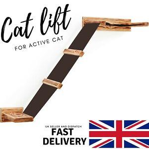 Cat Wall Lift Shelf Wall Mounted Platform Bridge With Bed Modern Cat Furniture ✅