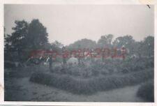 Foto, Wehrmacht, Polen, Soldatenfriedhof nahe Warschau; 5026-224