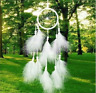 Attrape Rêve Plumes Dream-Catcher Blanc Décoration - Bijoux des Lys