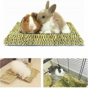 Animal Hamster Grass Chew Mat Breakers Toy Pet Rabbit Rat Guinea Pig House Pad