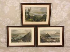 3 Antique Engravings in Frames Sugar Loaf Areas and Lakes from Maine