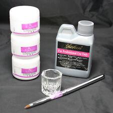 Basic Nail Art Kit Clear Pink White Powder Dappen Dish Acrylic Liquid Pen Tools