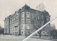 Braunschweig - Neues Museumsgebäude -  um 1905 - selten     L 16-12
