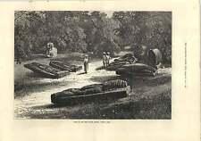 1875 tumbas de los gond rajás Chanda central de la India