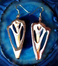 Ohrhänger Ohrring Muschel Scheibe weiß braun Haken aus Silber 925 vergoldet