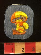 Vtg Orange & Yellow Mushrooms On Denim Jacket Patch 87N7