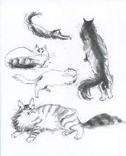 CAT CATS KITTENS PLAYING SLEEPING PRIMITIVE NAIVE FOLK ART BLANK NOTE CARD