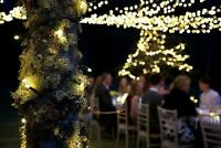 Professional IP44 Outdoor LED String Fairy Lights Xmas Wedding Party Garden