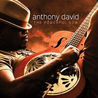 Anthony David - The Powerful Now [CD]