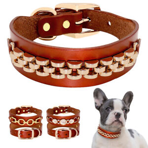 Gold Studded Pet Dog Genuine Leather Collar for Small Medium Dogs French Bulldog