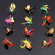 12 Stk/set Trockenfliegen Fliegenfischen Angelsport Fliegen ~Trocken Angelköder~